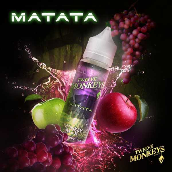 12 Monkeys Liquid Matata